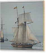 1812 Pride Of Baltimore II Wood Print by Marcia L Jones