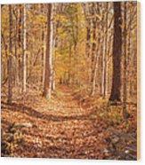 Autumn Trail Wood Print by Brian Jannsen