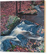 Chesterfield Gorge New Hampshire Wood Print by Edward Fielding