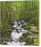 Smoky Mountain Stream Wood Print by Frozen in Time Fine Art Photography