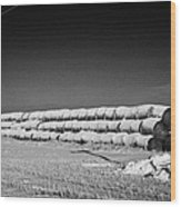 stack of frozen snow covered hay bales in a field Forget Saskatchewan Canada Wood Print by Joe Fox