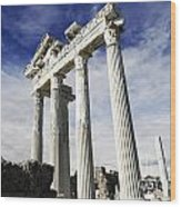 Temple Of Apollo In Side Wood Print by Jelena Jovanovic