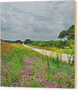 Wildflower Wonderland Wood Print by Lynn Bauer