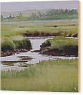 Yarmouthport Marsh Wood Print by Karol Wyckoff