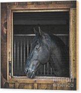 Horse In Stable Wood Print by Elena Elisseeva