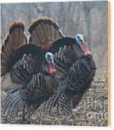 Jake Eastern Wild Turkeys Wood Print by Linda Freshwaters Arndt