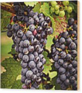 Red Grapes Wood Print by Elena Elisseeva