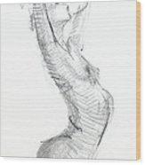 Rcnpaintings.com Wood Print by Chris N Rohrbach