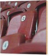 Stadium Seats Wood Print by Frank Gaertner