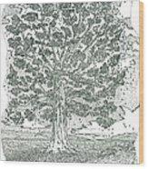 A Change Of Seasons Wood Print by Glenn McCarthy Art and Photography