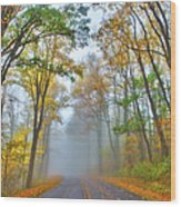A Foggy Drive Into Autumn - Blue Ridge Parkway Wood Print by Dan Carmichael