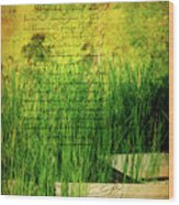 A Love Letter From Summer Wood Print by Lois Bryan