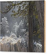 A North Woods Fairy Tale Wood Print by Mary Amerman