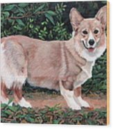 A Portrait Of Pickle Wood Print by Sandra Chase