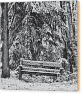 A Quiet Place Wood Print by Tim Gainey