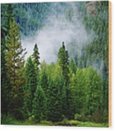 A River Runs Through It  Wood Print by Joseph Noonan