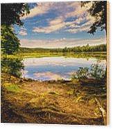 A Secret Place Wood Print by Bob Orsillo