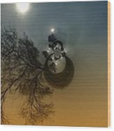 A Tree In The Sky Wood Print by Jeff Swan
