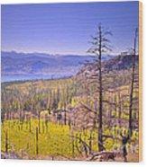 A View From Okanagan Mountain Wood Print by Tara Turner