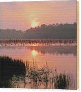 A Wetlands Sunrise Wood Print by JC Findley