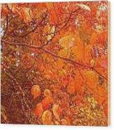 Ablaze Wood Print by Elizabeth Carr