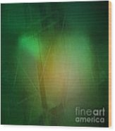 Abstract 1005 Wood Print by John Krakora