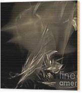 Abstraction 0151 Marucii Wood Print by Marek Lutek