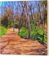 Afternoon Walk Wood Print by Michael Pickett