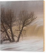 Against The Current Wood Print by Mary Amerman