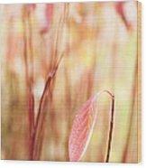 Alone Wood Print by Anne Gilbert