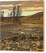 Along The Larmar River Wood Print by Marty Koch