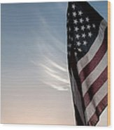 America Wood Print by Peter Tellone