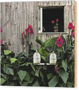 Amish Barn Wood Print by Diane Diederich