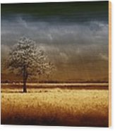 And The Rains Came Wood Print by Holly Kempe