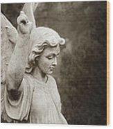 Angel Of Comfort Wood Print by Terry Rowe