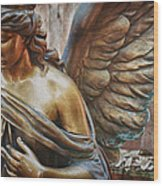 Angelic Contemplation Wood Print by Terry Rowe