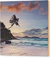 Anse Severe Wood Print by Michael Breitung