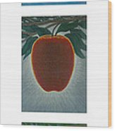 Apples Triptych 2 Wood Print by Don Young