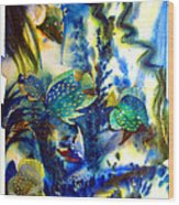 Aquarium Archived Work  Wood Print by Charlie Spear
