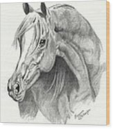 Arabian Stallion Wood Print by Suzanne Schaefer