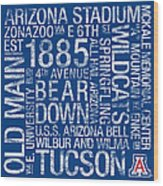Arizona College Colors Subway Art Wood Print by Replay Photos