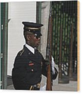 Arlington National Cemetery - Tomb Of The Unknown Soldier - 12122 Wood Print by DC Photographer
