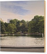 Around The Central Park Pond Wood Print by Madeline Ellis
