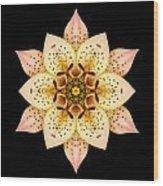 Asiatic Lily Flower Mandala Wood Print by David J Bookbinder