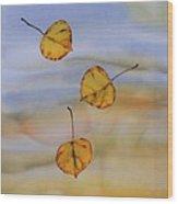 Aspen In Fall Wood Print by Carolyn Doe