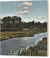 Assateague Island - A Nature Preserve Wood Print by Gerlinde Keating - Galleria GK Keating Associates Inc