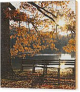 Autumn Beauty Wood Print by Debra and Dave Vanderlaan