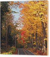 Autumn Country Road Wood Print by Joann Vitali