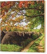 Autumn Hay Bales Blue Ridge Mountains II Wood Print by Dan Carmichael