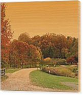Autumn In The Park - Holmdel Park Wood Print by Angie Tirado